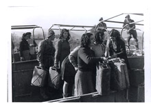 Falconara. Italian girls employed at a British  petrol dump during transfer empty cans from one truck to another - November 10th, 1944
